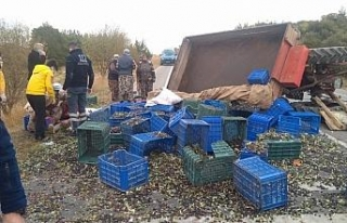 Zeytin işçilerini taşıyan traktör devrildi: 5...