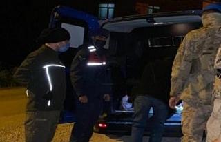 Alaplı'da yaralı karaca jandarma ekiplerince kurtarıldı