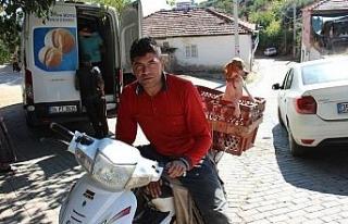 Antalya'dan Aydın'a uzanan çift kol nakilli...