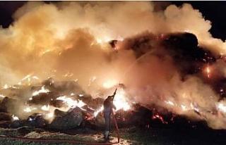 Arazide samanlar alev alev yandı