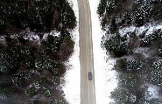 Kar yağdı, Uludağ'da çam ağaçları görsel...