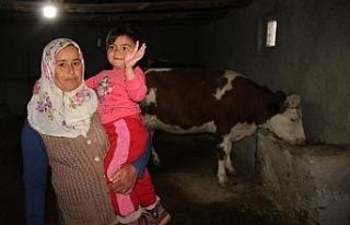 ORKÖY projesi ile 15 ailenin hayatı değişti