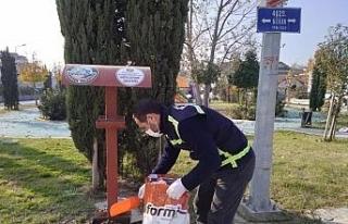 Serdivan Belediyesi, sokak hayvanlarını yalnız...