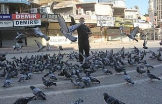 Sokağa çıkma kısıtlamasında güvercinleri besledi