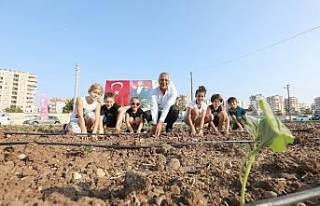 """Tarhan: """"Tarımsal üretimi kentin merkezine..."""