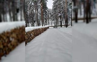 Eşsiz kar manzaraları ile Lütfiye köyü