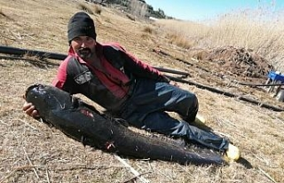 Burdur'un Gölhisar Gölü'nde ağa, rekor büyüklükte...