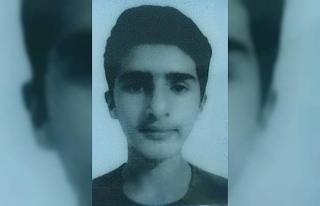 Sincap avına çıkan 15 yaşındaki çocuk kazara...