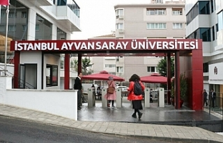 İstanbul Ayvansaray Üniversitesi 88 öğretim üyesi...
