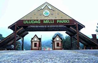 Uludağ Milli Parkı Sarıalan'da 4 adet dükkan...