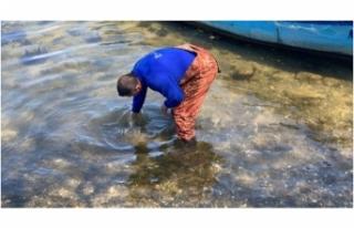 Bursa'da balıkçıların ağına tarihi eser...
