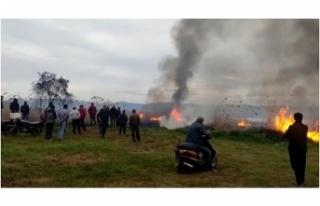 İznik Gölü kıyısında büyük yangın: 15 dönüm...