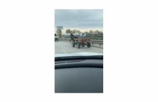 Bursa'da sürücüsüz at arabası trafiği bir...