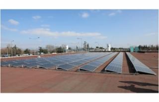 Türkiye'nin yenilenebilir enerji hamlesi