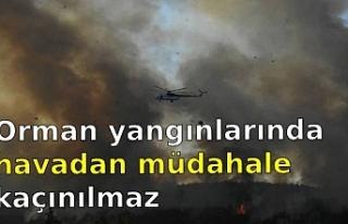 Cerrahpaşa Orman Fakültesi öğretim üyelerinden...