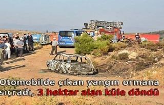 Otomobilde çıkan yangın ormana sıçradı, 3 hektar...