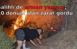 Salihli'de orman yangını; 10 dönüm alan zarar...