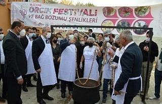Elazığ'da 15'inci 'Orcik Festivali...