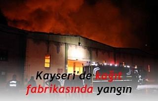 Kayseri'de kağıt fabrikasında yangın