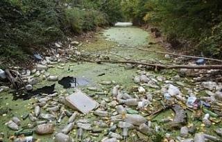 Kuraklıktan yeşile bürünen Bayır Deresi, çöplüğe...
