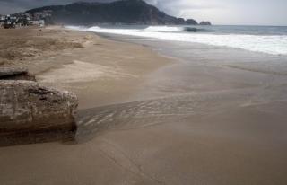 Kleopatra Plajı'na sızan petrol temizlendi
