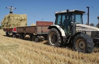 Tarım atıkları enerjiye dönüşüyor