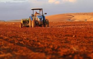 Çiftçiyi tohum ekme telaşı sardı