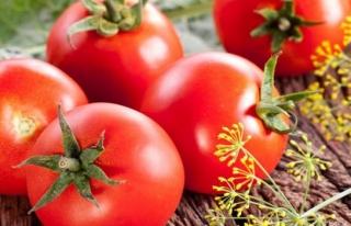 Rusya'dan domates için tarih