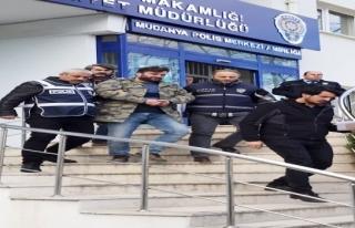 Mudanya'da Köpek yüzünden iki kişiyi öldüren...