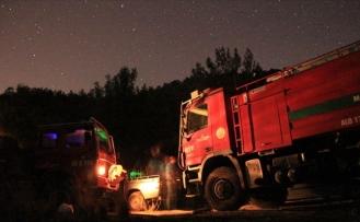 Milas'taki Yangın Kontrol Altına Alındı