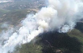 Orhaneli'ndeki yangınla ilgili kundaklama şüphesi