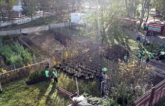 Ormancılar 'rekor etkinliğe' hazırlanıyor