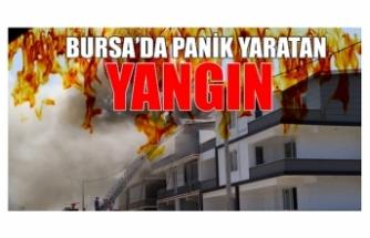 Bursa'da panik yaratan yangın!