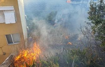 Gemlik'te çalılık alandaki yangın çevresinde oturanları korkuttu