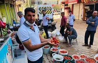 Kızıltepeli kadınların köyde ürettiği organik domatesler tadıyla nam salıyor