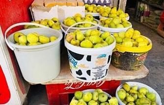 Kızıltepe'nin saklı cenneti Ğurs Vadisi incirleri çarşı pazarda
