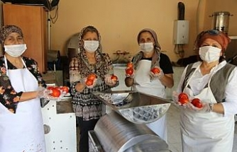 Artvin'de kadınlar kooperatif kurdu, doğal ürünlerin satışını yapmaya başladı
