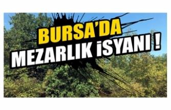 Bursa'da mezarlık isyanı !