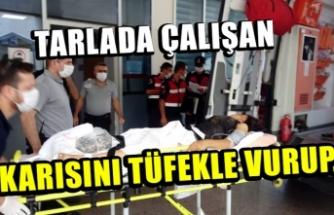 Bursa'da tarlada çalışırken tartıştığı karısını tüfekle yaraladı