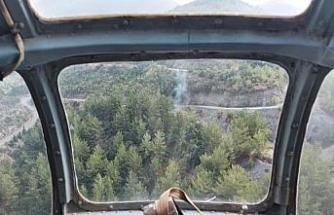 Hatay'da 8 farklı noktada orman yangını; 1 gözaltı