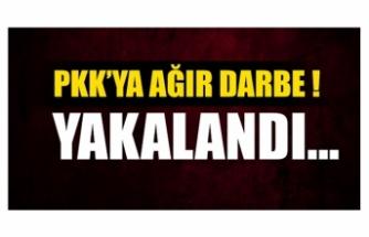 PKK'ya ağır darbe ! YAKALANDI !
