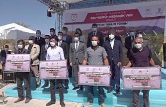 Sivas'ta çiftçilere koyun dağıtımı yapıldı