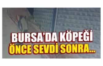 Bursa'da köpeği önce sevdi, sonra kaçırdı, o anlar güvenlik kameralarına yansıdı
