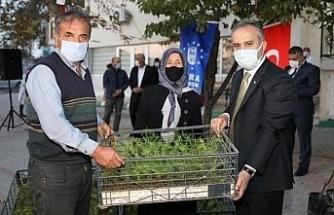 Bursa Büyükşehir'den dağ yöresine nitelikli tarım desteği