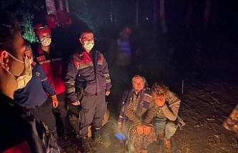 Kestane toplarken kaybolan kadın bulundu