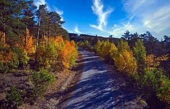 Yozgat'ta sonbahar güzelliği