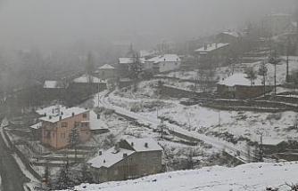 Hadim'de kar yağışı etkili oluyor