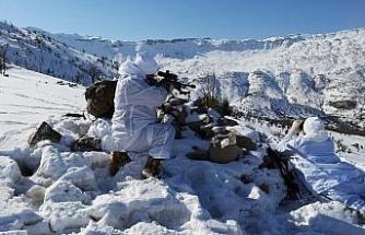 PKK'nın kış üstlenmesini engellemek için 'Eren' operasyonları başlatıldı