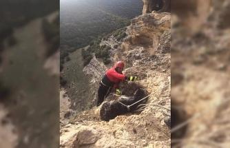 Yamaçta mahsur kalan keçilerin yardımına itfaiye koştu
