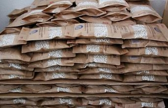 Konya'nın coğrafi işaret belgeli Çetmi Şeker Fasulyesi, Almanya'ya ihraç edildi